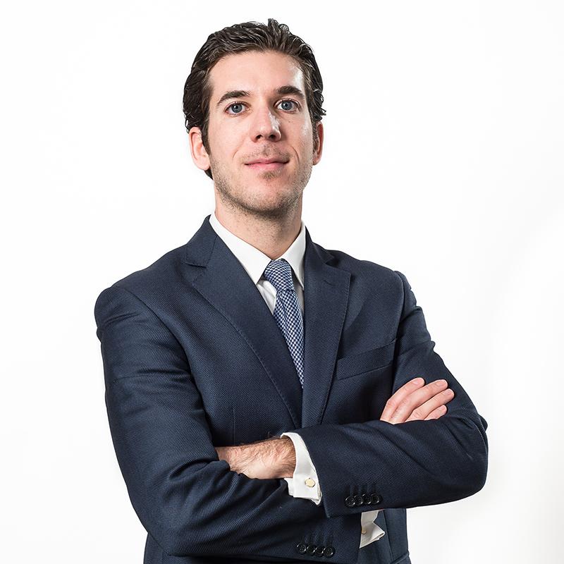 Alessandro Viva, Commercialista e Revisore Legale